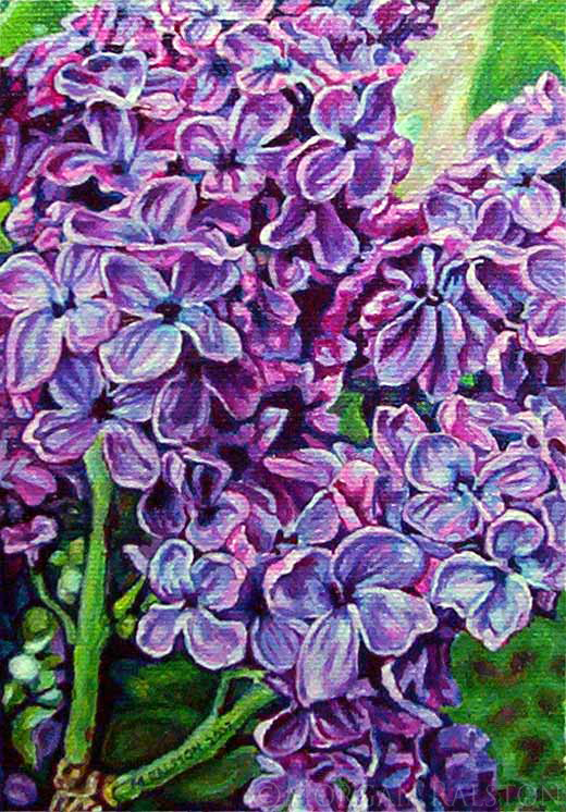 Giclee Canvas Print 8x10 - Lilacs No.1 - Fine Art Purple, Green Flowers Signed Limited Edition